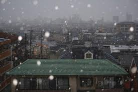 tokyo-gets-early-snow